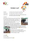 Dreibein-Lauf.pdf