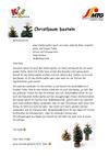 Christbaum_basteln.pdf