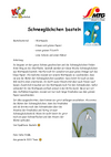 Schneegloeckchen_basteln.pdf