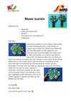 Baeume_basteln.pdf