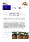 Spionspiel.pdf